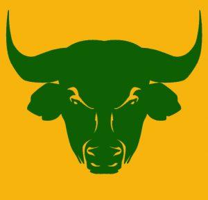 معامله سهام و سرمایه گذاری در بازار گاو نر